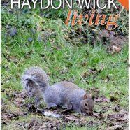 "Haydon Wick ""Living"" Spring 2018"