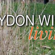 "Haydon Wick ""Living"" Spring 2019"